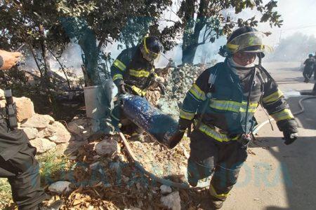 Se incendia un gallinero; mueren dos pavos indios
