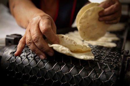 Por Covid-19, el kilo de tortillas podría llegar hasta 20 pesos en Yucatán