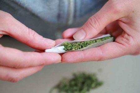 Avanza en comisiones el dictamen de uso lúdico de la marihuana en México