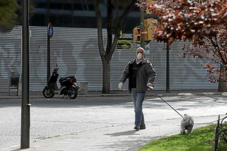 Cuida a tus mascosta: no dejes que anden en la calle durante la cuarentena