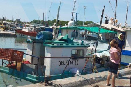 Pescador muere por descompresión, buceando en busca de mero