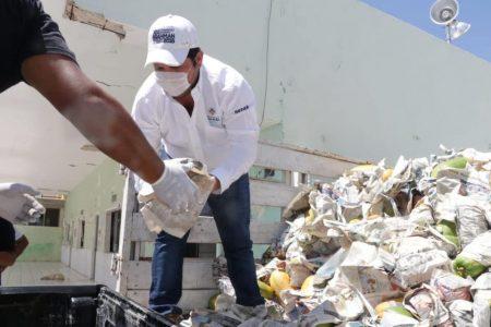 """Familias yucatecas reciben apoyos alimentarios a través de """"Yucatán Solidario"""""""