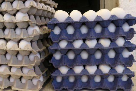Cero desabasto de huevo; no hay motivo para aumentar el precio: Profeco