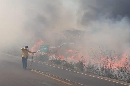 Arduo combate a los incendios forestales en la zona de Tekax
