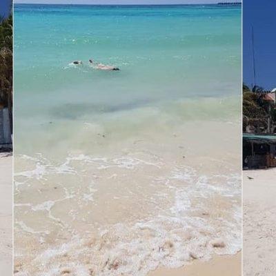 Aprovechó la cuarentena para bañarse en cueros en el mar de la Riviera Maya