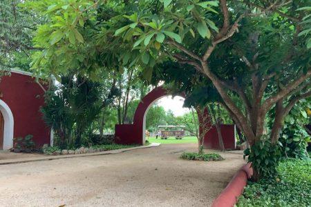 Covid-19 trae de vuelta días de hambre y explotación en hacienda yucateca