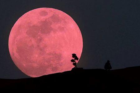 Este martes 7 de abril podrás disfrutar la Superluna Rosa: será la más cercana de 2020