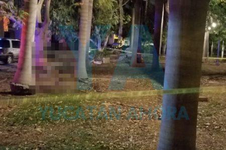 Se ahorca un joven de 18 años en un parque de Gran Santa Fe