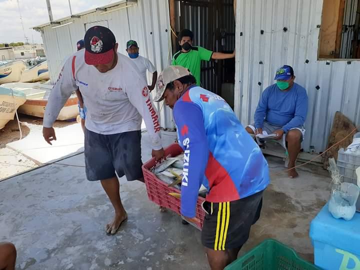 Sisaleños donan pescado para comunidades con hambre por el Covid-19