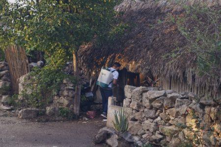 La lucha contra el Covid-19, calle por calle en municipio yucateco