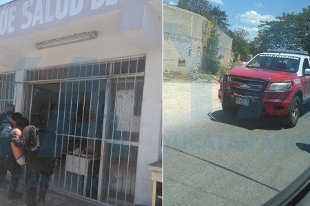 Abejas africanizadas atacan a vecinos de Mulchechén I, en Kanasín