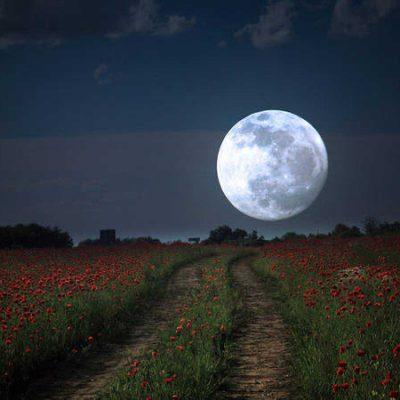 Este jueves 7 de mayo, la Luna llena de las Flores