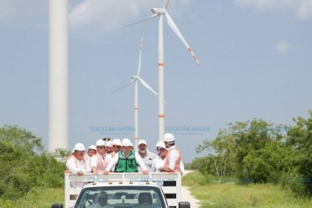 La Corte anula permiso de parque solar y eólico en el norte de Yucatán