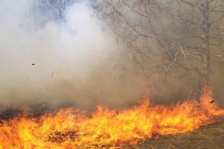 Por tiempo limitado, se reanuda la temporada de quemas en Yucatán