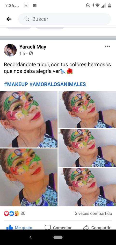 Joven homenajea al tucán 'Tuqui' con colorido maquillaje