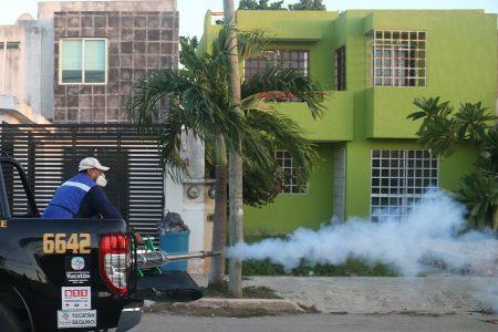 Fumigan Mérida y la costa tras las lluvias de la tormenta Cristóbal