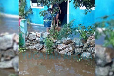 Protección Civil apoya a familias con problemas de inundaciones en Umán