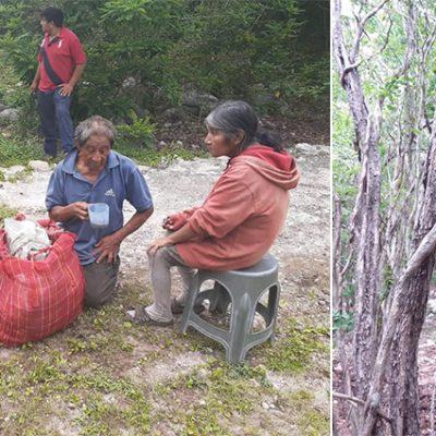 Auxilio de una pareja de la tercera edad que vive en la selva de Valladolid