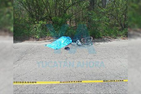 Fallece un ciclista atropellado por un tráiler que huye