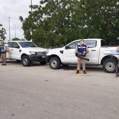 Mucho mosco, poco dengue en Yucatán