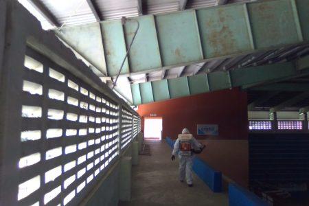 Reaparece el dengue en Yucatán, ya son 133 los infectados