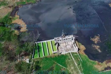 Granjas porcícolas de Yucatán, bajo la lupa de Conagua