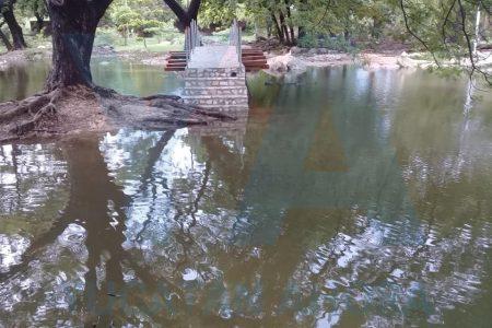 Se inunda el Parque Hundido del Poniente