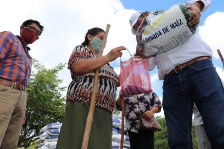 Familias del campo reciben maíz para que vuelvan a fomentar sus milpas