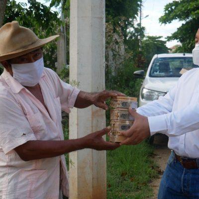 Entregan 500 abejas reinas a los apicultores yucatecos