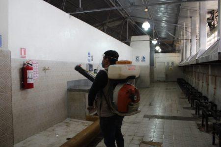 El dengue, por lo suelos en Yucatán: hasta Durango está arriba del estado