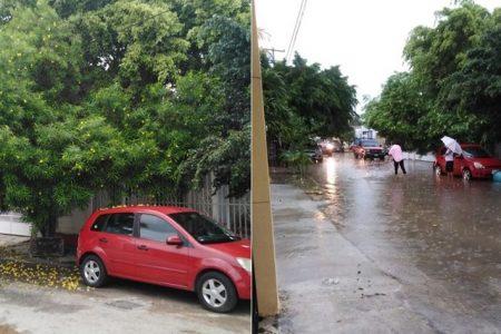 Encharcamientos por falta de limpieza de un vecino, en Francisco de Montejo
