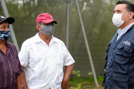Pandemia de Covid-19 refrenda transparencia en el Ayuntamiento de Mérida