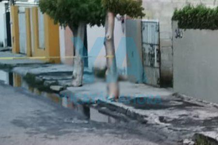 Drama de Covid-19: mujer confinada no pudo auxiliar a su padre muerto en la calle