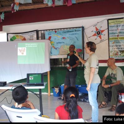 Tren Maya, gran potencial para el ordenamiento territorial y la protección de áreas naturales: investigador