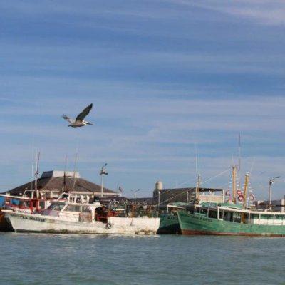 Dependen de la pesca artesanal 30 mil personas en la Península de Yucatán