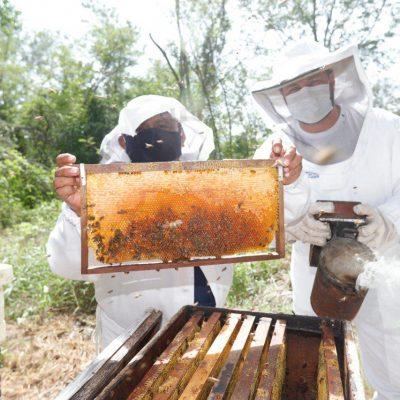 El alcalde Renán Barrera mantiene el apoyo a productores de comisarías