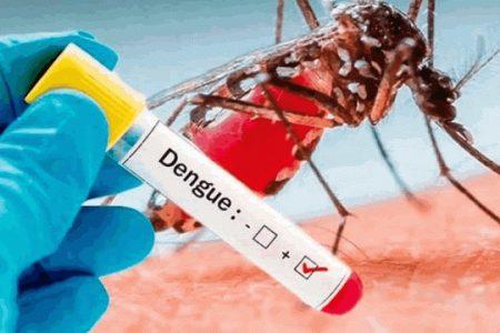 Aumentan a 13 las defunciones probables por dengue en la Península