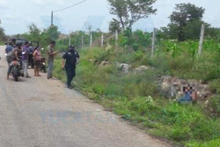 Fatal desenlace de un accidente en la carretera del sur de Yucatán