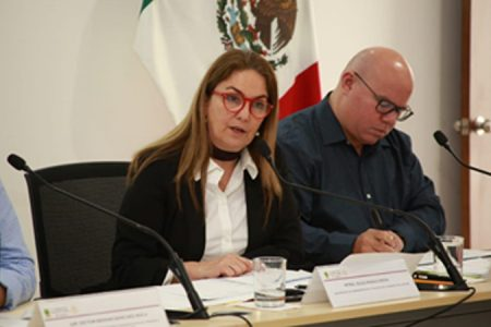 Ni estados ni municipios han recibido dinero extra de la Federación: Olga Rosas