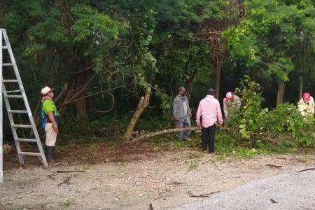 Gobierno del Estado apoya con Empleo Temporal a 3,000 empleados de paradores turísticos de Yucatán