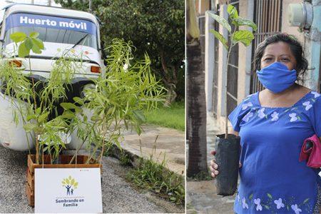 Adopta un árbol desde tu domicilio con el Huerto Móvil