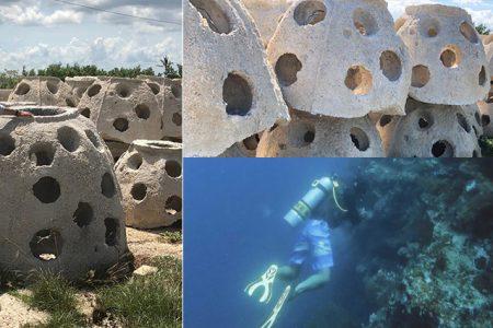 Yucatán tendrá el primer cementerio marino de Latinoamérica