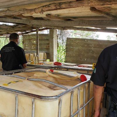 Catean predio en la vía a Cancún: decomisan tres mil 300 litros de hidrocarburos