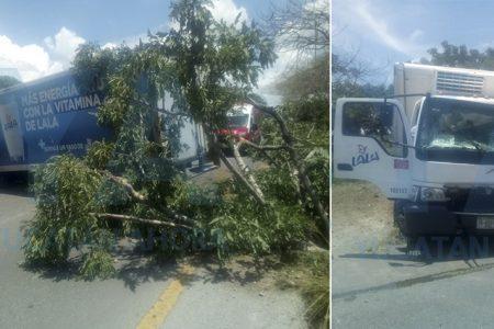 Se accidenta camión de Lala: dos hospitalizados