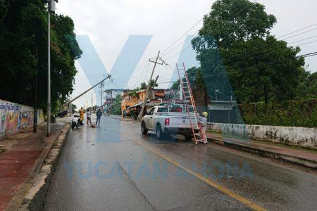 'Mini ciclón' en Pisté derriba ocho árboles y cinco postes de la CFE