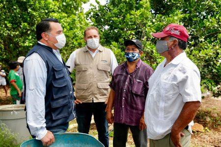 Renán Barrera impulsa el consumo a productores meridanos