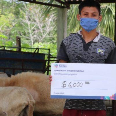 Ganaderos yucatecos reciben apoyos por 2.5 millones de pesos