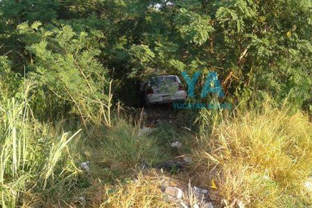 Abandonan un auto dentro del monte