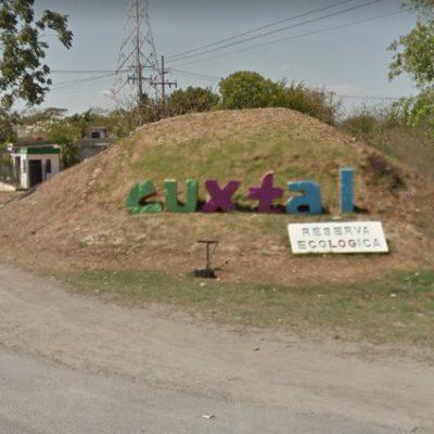 Desolador panorama en Cuxtal: deforestación, basura y saqueo de piedras