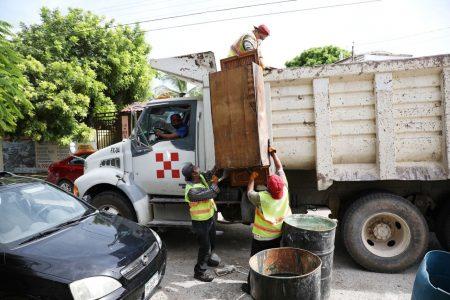 Ligero aumento del dengue en la Península: tres casos en una quincena